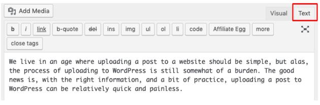 Text editor tab on wordpress