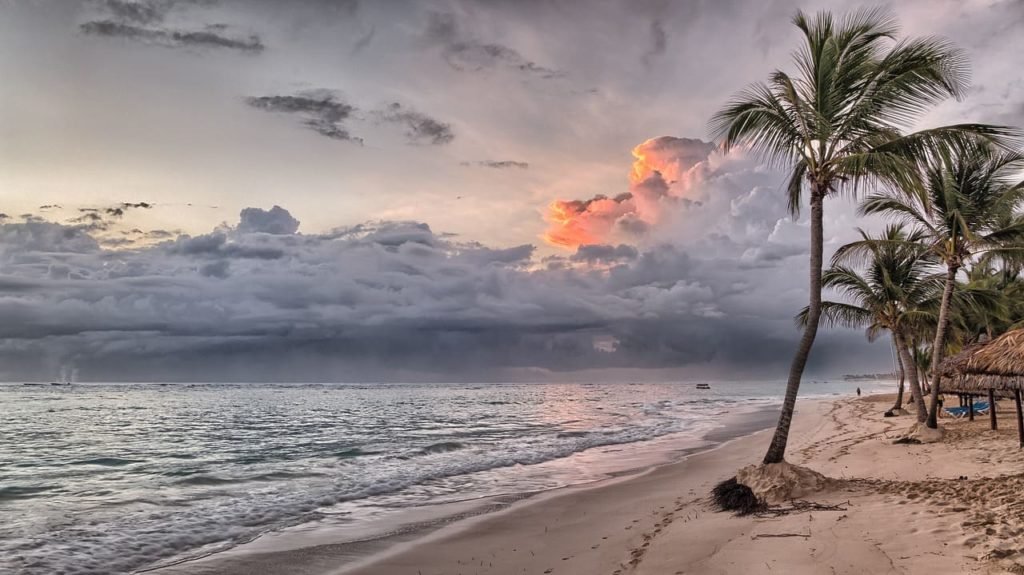 A beach with palm trees and dramatic sky in the background